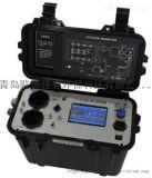 LB-30E烟气汞分析仪 开封卫生局调研检测