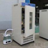 上海培因厂家 恒温恒湿培养箱 LHS-80