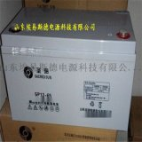 聖陽蓄電池12V65AH  SP12-100