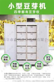 天津小型豆芽机生产线  厂家直销