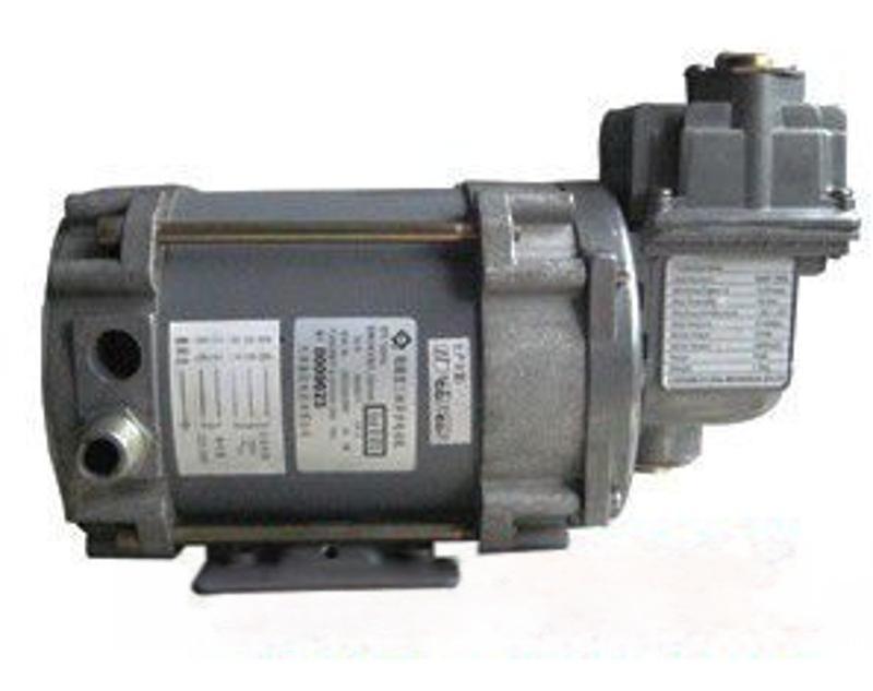 油氣回收防爆真空泵油氣回收真空泵 加油站油氣回收單頭泵