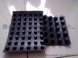 贵州贵阳10-30cm毛细型排水板