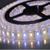 5050led双色温灯条灯带5050rgbw四合一灯带一米60灯24v