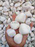 3-5公分白色拋光鵝卵石價格 天津白色鵝卵石批發
