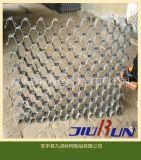 龟甲网 安平龟甲网 304不锈钢龟甲网