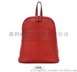 背包,休闲包,旅行包,双肩带包,真皮包