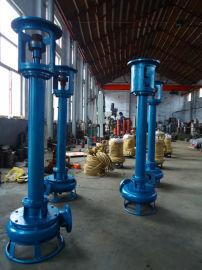 耐磨立式泥浆泵 长轴立式渣浆泵 立式液下清淤泵