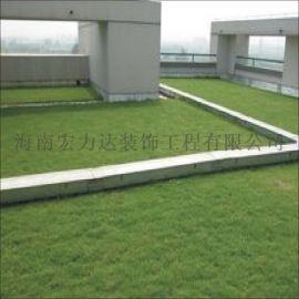運動場草皮,運動場草皮,防菌,耐用地面施工材料,