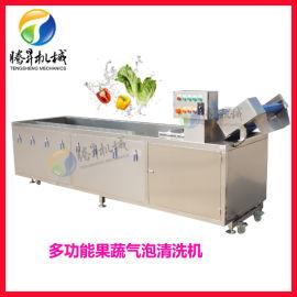 大型气泡水果蔬菜清洗机 腾昇水果蔬菜清洗机