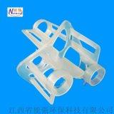 聚丙烯海尔环 PP塑料皇冠拉西环
