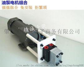 DISK喷漆齿轮油泵电机组合 喷漆供油控制系统
