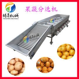 选果机 腾昇牌 水果分选机 不锈钢果蔬分级机