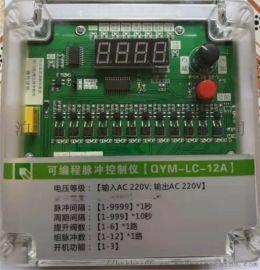 可编程脉冲控制仪QYM-LC-12A提升控制器