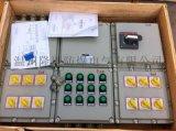 防爆配电箱BXD51-8/K32-XXF1
