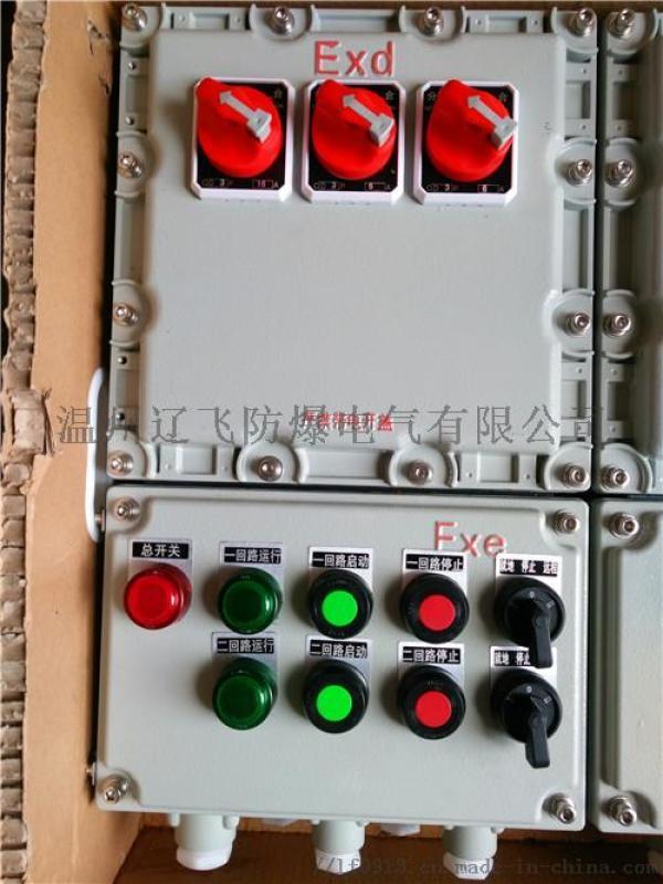 控制电机防爆配电箱厂家