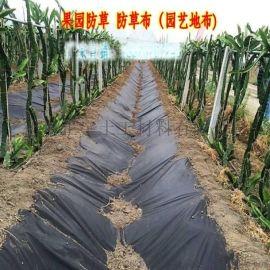 盖草布 全新料盖草布 使用年限长 加双抗