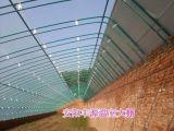 养殖大棚骨架设计施工 多用途温室大棚搭建