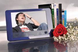 便携式DVD播放机(PM-9800)