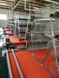三四层阶梯层叠式蛋鸡笼子 镀锌鸡笼 喷塑养鸡设备