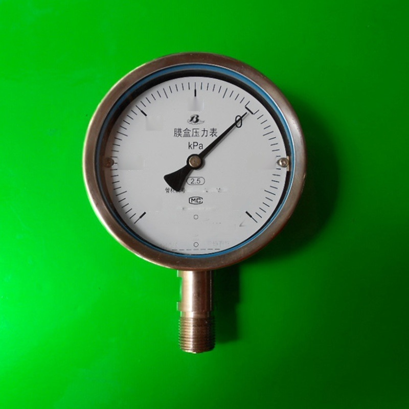 YE(-BF)系列膜盒壓力錶
