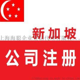 注册新加坡私人有限公司、新加坡私人有限公司细则