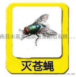 南昌灭蚊子,南昌灭苍蝇,南昌灭马陆