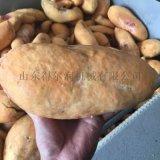 唐山新产业红薯鲜切加工 红薯片油炸加工设备