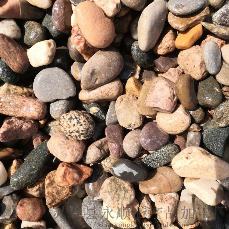 郑州天然鹅卵石   永顺杂色鹅卵石厂家