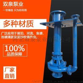 立式泥浆泵液下渣浆泵潜水抽沙吸砂泵矿用耐磨清淤泥化粪池排污泵