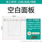 天正电气(TENGEN)K1 开关类 空白面板 大板荧光开关 白色 家用墙壁86型带荧光开关 面板开关