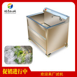 小型果蔬清洗机 气泡臭氧蔬菜清洗机 豆芽木耳清洗机