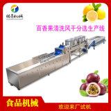 百香果加工生產設備,百香果清洗風乾分選機