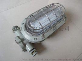 DJC24/127矿用隔爆兼本质安全型LED支架灯