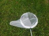 掃網不鏽鋼昆蟲捕捉網