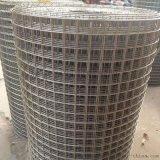 廠家直銷鍍鋅鋼絲網 鋼絲網片