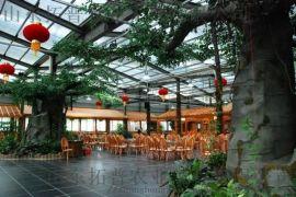 生态餐厅种类