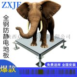 全鋼PVC防靜電地板 ZXJF防靜電地板品牌 防靜電地板廠家
