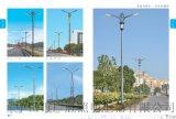 道路照明燈 路燈工程案例