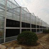 玻璃大棚設備 玻璃溫室大棚工程