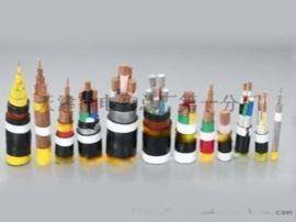 国标ZR-KVVP2-22控制电缆