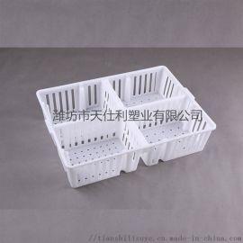加高塑料鸡鸭苗箱 鸭苗运输箱 鸡苗箱图片