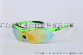 骑行成人遮阳防护眼镜