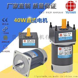 35W直流电机/永磁马达