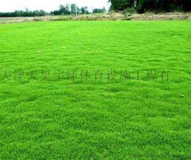 人造草坪生产厂家欢迎您