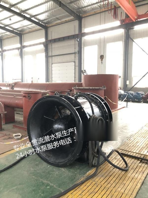 广东竖井式安装QGWZ贯流泵多少钱