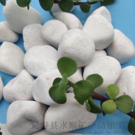 陕西榆林2-3 3-5厘米铺路装饰用白色鹅卵石厂家