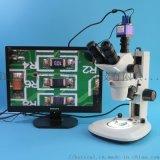 XTL-6745TJ3-550HS型三目实体显微镜