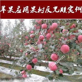 厂家直销 超亮农用果树反光膜微孔防水型苹果反光膜