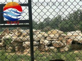 动物园围网浸塑耐用防锈质量**