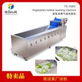 辣椒网带式清洗机 气泡洗菜机